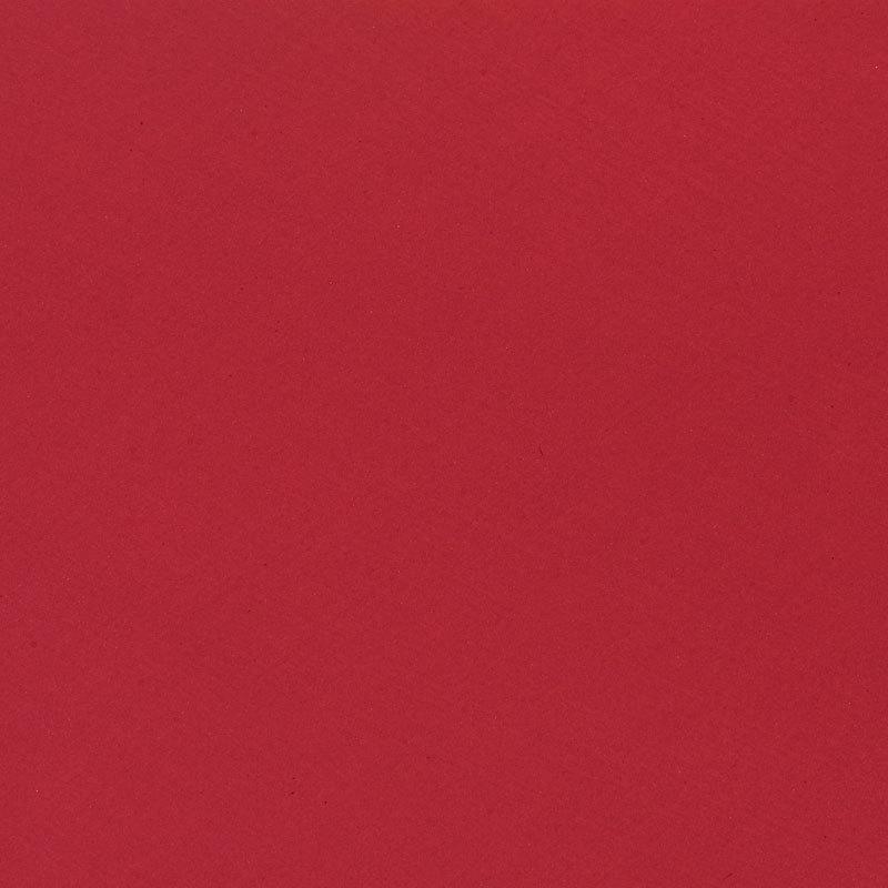 Red Hot Poker