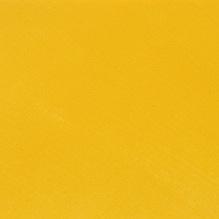 Yellow Monday
